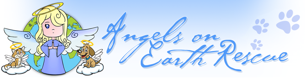 Angels on Earth Rescue